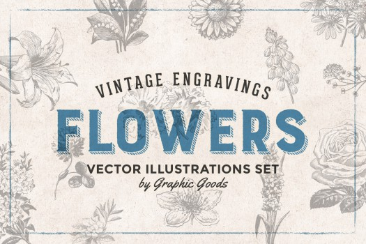 66 Flowers - Vintage Engravings Set