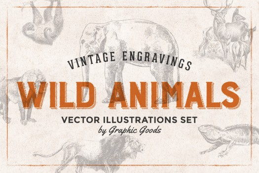 127 Wild Animals Vintage Engravings
