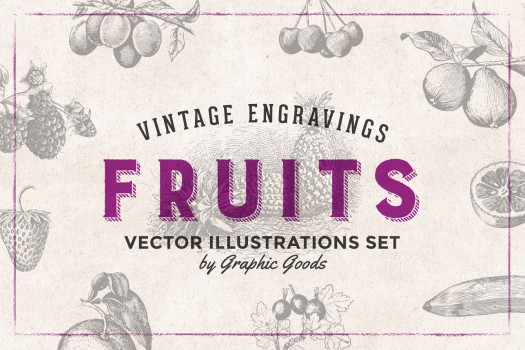 84 Fruits - Vintage Engravings Set